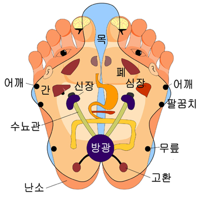foot reflexology_korean.jpg